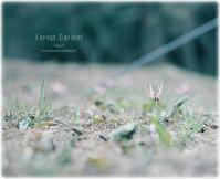 待ち焦がれ* - Forest Garden