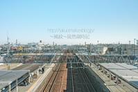 東海道本線を望む。  (写真部門) - ~風紋~徒然歳時記