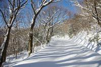 美川スキー場からスノーシューで歩いてみた - 軟弱足 の山歩き
