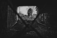 向こうの世界… - Photo & Shot