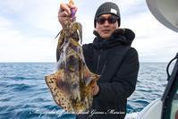 2017,01/27 ティップラン - 鯛ラバ遊漁船  Miyazaki Offshore Boat Game Marine Frog