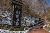 三頭大滝@都民の森 - デジカメ写真集