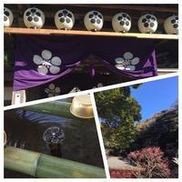 筆供養@荏柄天神社 - 瑠璃色の庭