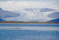 2016 夏ーアイスランド旅行 8日目ー氷河 - Mitokoのパリ日記