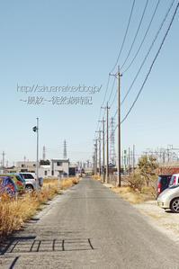 遠州高塚新幹線高架沿い。  (写真部門) - ~風紋~徒然歳時記