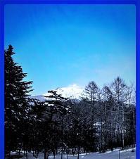 軽井沢の1月は、 - 軽井沢プリフラdiary