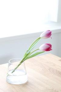 小さな春の訪れ・・・ - パンとアイシングクッキー、マシュマロフォンダントの教室 launa