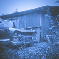 月夜の晩に涙を流すCEDRIC(写真部門) - Film&Gasoline