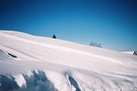 雪虫うごめく - 夏丸シルバーひとりごち