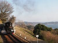 愛知こどもの国 その2 - お寺や神社、古い町並み、鉄道、他色々の写真ブログ