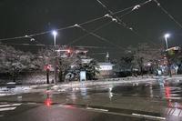 富山城を「日本100名城」に強く推薦したいと思った日 - ~何でも揃う~本和堂雑多店(写真館)
