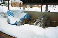駐輪場の雪と苫小牧往還 - 照片画廊