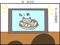 坊ちゃんとネコ② - 芋蛙日記