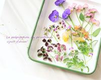 簡単DIY!vol.5「アイロンで押し花!UVアクセサリー作り方」〜GreenSnap〜と文房具のお話 - a piece of dream*