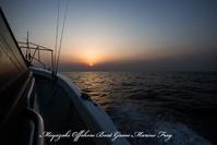 2017,01/28 鯛ラバ - 鯛ラバ遊漁船  Miyazaki Offshore Boat Game Marine Frog