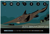 クロテングギンザメ - うおろぐ3