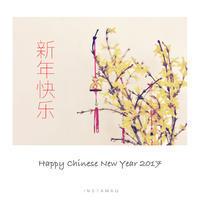 新年快楽■HAPPY CHINESE NEW YEAR 2017 - フォトジェニックな日々
