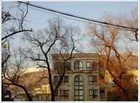 ニアバラン周辺夕暮れ時の散歩(旅行・お出かけ部門) - テヘランのアルバム
