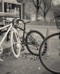 2017年2月1日 寒さの中で語り合う自転車たち (写真部門) - Silver Oblivion