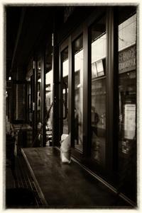 Ebisu - Slow Photo Life