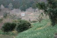 1/29 房総100名山 江月山(池月) - 犬の一歩
