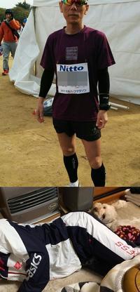 大阪ハーフマラソン2017 - 完太と希ララとちゃちゃ丸の成長日記