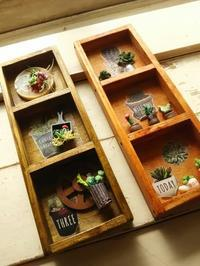 sumichan'sさんのミニチュア。 - 手作り雑貨&観葉植物 kinomi