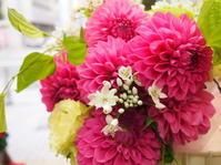 明日の1月31日は愛妻の日☆ - ルーシュの花仕事