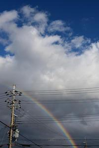 にわか雨 - usaco photo