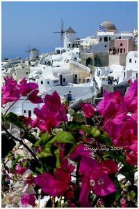 GREECE 2009  ② Santorini - Chaton の ひとりごと