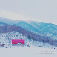 平日ブラボー♪**雪あそびDay - きまぐれ*風音・・kanon・・