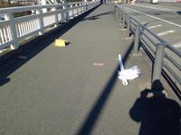 もう一つの箱根駅伝 - 猫多摩散歩日記 2