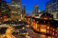 Tokyo Night(東京駅・都庁展望台) - 花景色-K.W.C. PhotoBlog