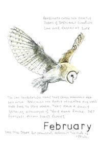 2月 -February- メンフクロウ - 英国カントリーサイドのライフスタイルをつたえる ブルーベルの森 ブログ