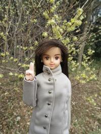 谷間の春は花が咲いてる - mitsukiのお気楽大作戦