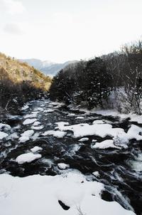 冬の戦場ヶ原-7 - 自然と仲良くなれたらいいな2