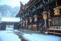 雪景色! ~北野天満宮~   (写真部門) - Prado Photography!