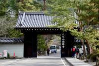 南禅寺と永観堂とカレーうどん - Buono Buono!