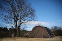 初張りは雨のち晴れのち雨のち晴れ@歌瀬キャンプ場 - パピヨン小雪の徒然日記