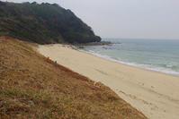 福岡県・糸島の浜を歩いてきました1 - Beachcomber's Logbook