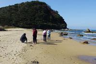 福岡県・糸島の浜を歩いてきました4 - Beachcomber's Logbook