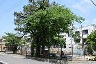 太平記を歩く。 その7 「雀の松原」 神戸市東灘区 - 坂の上のサインボード