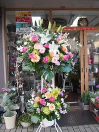 2月最初が大安でなんだかスタート良し☆お祝いのお花たち - ルーシュの花仕事