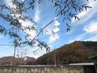 広いバルコニーと太陽光発電の家 - ㈱栃毛木材工業