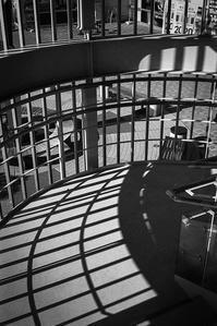 幽閉された変形螺旋階段のヒカリトカゲ - Film&Gasoline