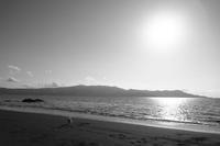 waku(3cut) 海岸2 -     ~風に乗って~    Present