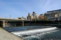 冬の京都 鴨川ぶらり - ぴんぼけふぉとぶろぐ2