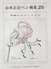 『自然画作品 ペン画集』 25 -  スケッチ感察ノート