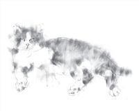 《 いまはゐないさんびきの猫から・・・暦二月如月 『 ねこがゐる 』 》 -  ー 画室 『游』 ー croquis  drawing dessin  sketch
