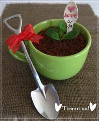 バレンタインに・・愛の鉢植え風☆ティラミス「パン・スイーツ部門」 - パンのちケーキ時々わんこ